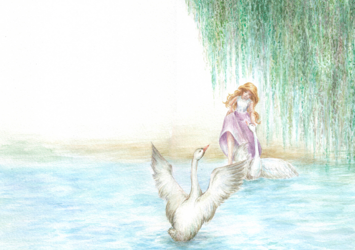 Grimm's fairytale Wild Swans - Illustration Watercolour