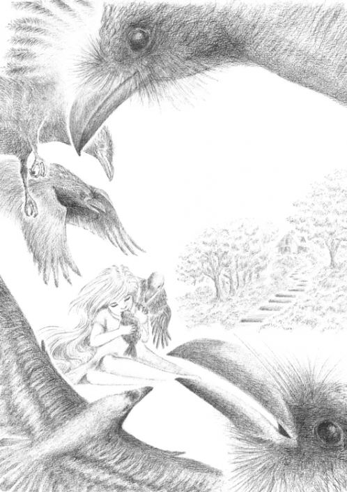 Grimm´s fairytale: Seven Ravens - Illustration Graphite