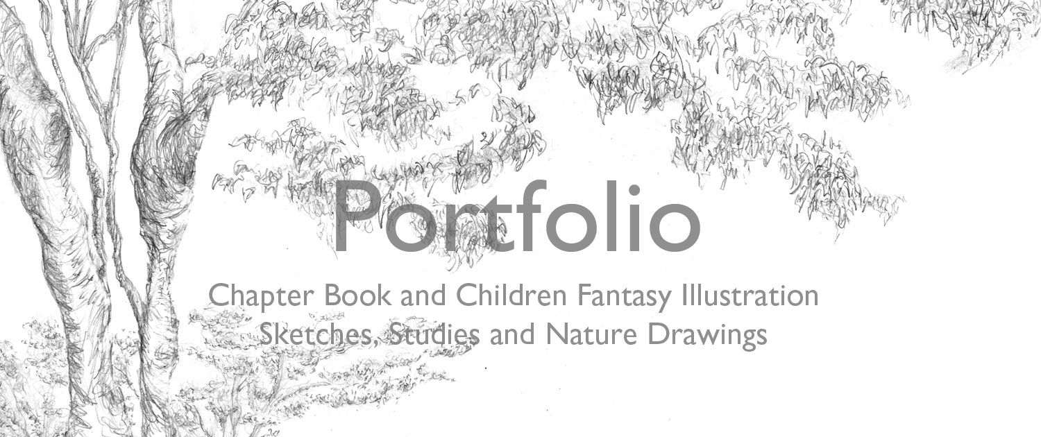 Portfolio Chapter Book and Children Fantasy Illustration Sketches, Studies and Nature Drawings